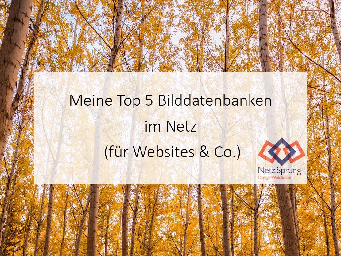 Meine Top 5 Bilddatenbanken für Websites & Co.