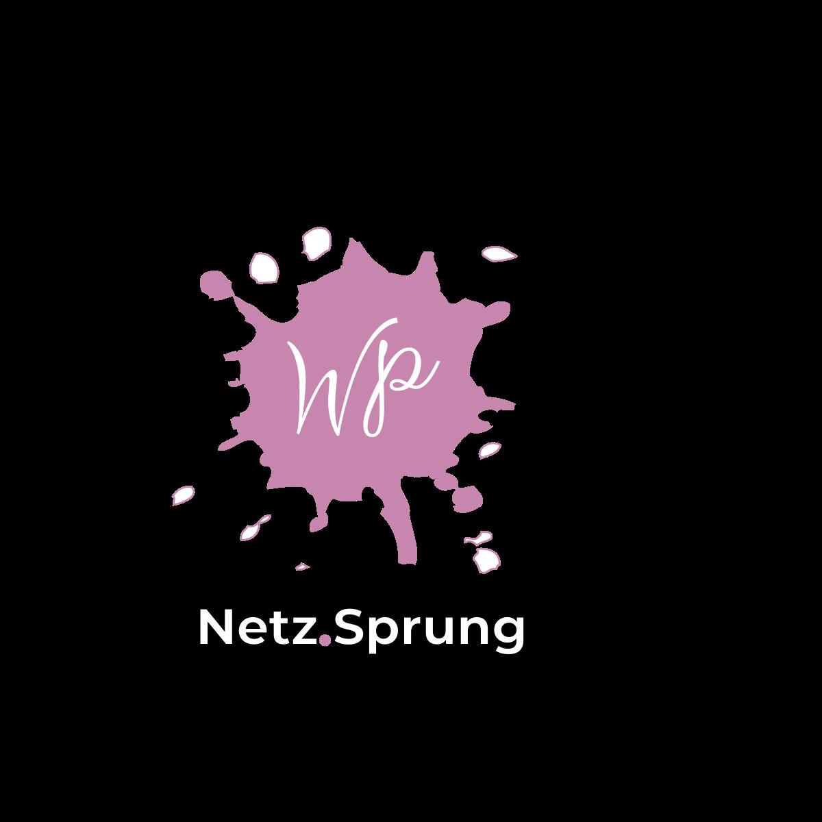 Netz.Sprung WordPress Websites